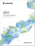 Download Corporate report 2017